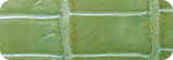 G-11 ライムグリーン