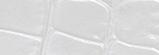 IC-11 パールホワイト